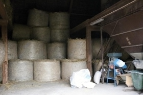 Storage of hay and feeding